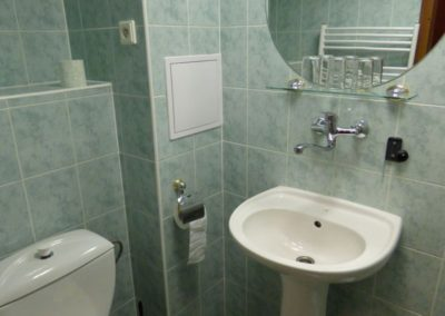 Koupelna v 2+kk